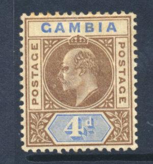 GAMO062179 50 1