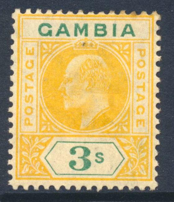 GAMO062190 85 1