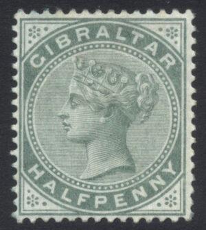 GIBZ023388 39 1